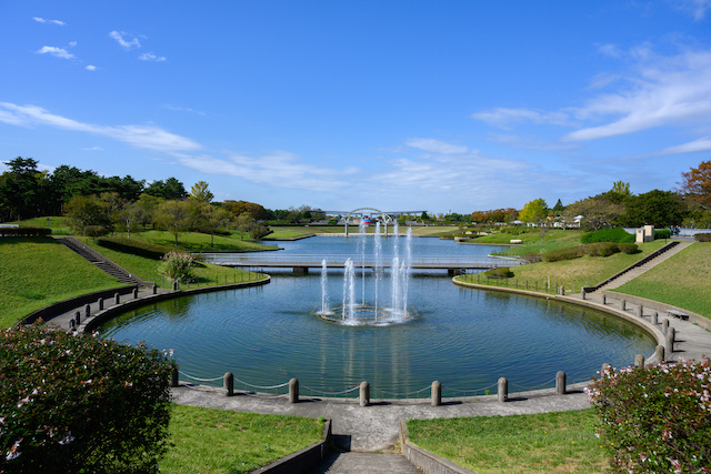 National Showa Memorial Park, where you can enjoy walking with your dog and seasonal plants | JAPANBOX