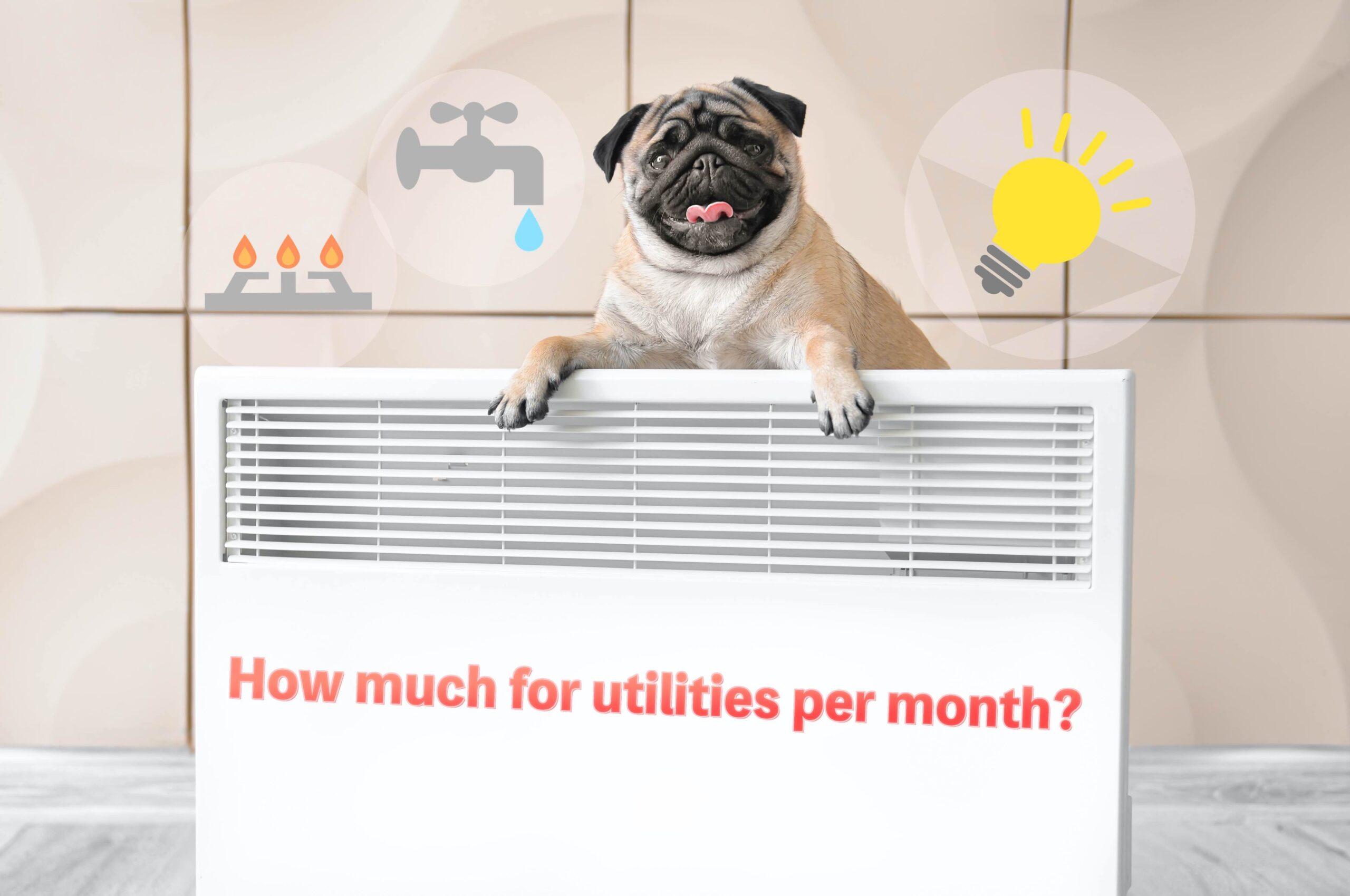 ジャパンボックス | How much for utilities per month?